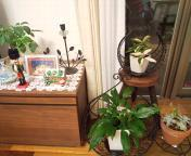 居心地のよい空間💛我が家・・終の棲家!