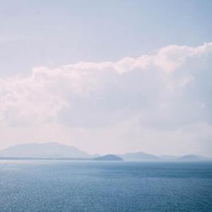 映画とカフェのある暮らし シネコヤ@鵠沼海岸