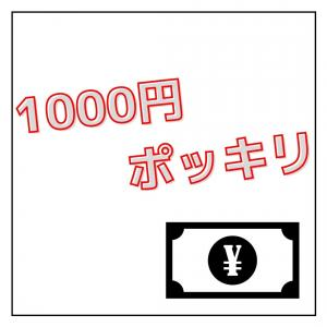 【楽天】買い回りに最適!1000円ポッキリ商品まとめ