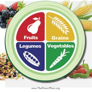 健康とがん予防のための食事の最低限をWHO,IARCに学ぶ