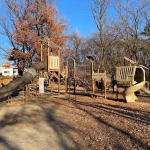 【遊具いっぱい】川越伊佐沼公園は子供の運動能力を高めるのに最高