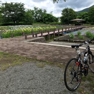 【あづみのサイクリング】あやめ公園,長峰山,大王わさび農場,豊科近代美術館