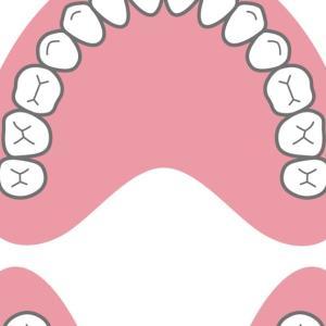経穴(ツボ)が口腔内にもたくさんある