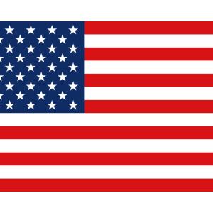 【アメリカ】住んでいてアメリカが嫌いになる瞬間。厳選集。