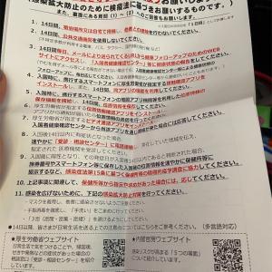 【コロナ禍】日本に帰国する書類と手続き。検疫対象州とそれ以外の違い。羽田空港に到着後から出るまでの時間は?