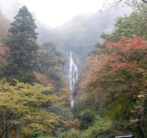 【神庭の滝】を訪問!想像以上に大きい岡山県の名瀑