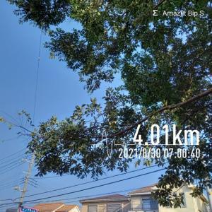 朝🌄ラン🏃 4km
