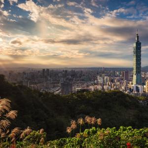 蔡英文総統「台湾産パイナップルを応援してくださる日本の皆さん、ありがとうございます!」