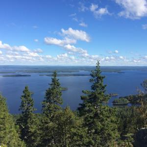 フィンランド旅行:コリ国立公園の行きかた