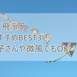 よく飛ぶ凧(カイト)ならおすすめはコレ!子どもや微風でも楽しめる