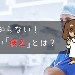 【案外知らない!?】病気の正しい名前!
