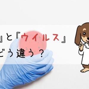 【違いを解説】細菌とウイルスはどう違う?