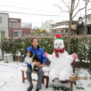 小次郎と雪 -雪じゃ!2016年-