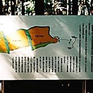 城山(埼玉) 全国で276山あるうちの1つ重要遺跡の山