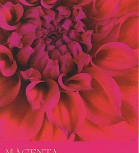 今週のカラーカード:「マゼンタ/赤紫色」(7/26~8/1)