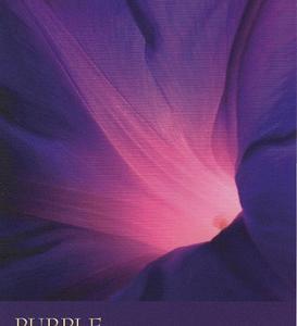 今週のカラーカード:「パープル」(8/2~8/8)