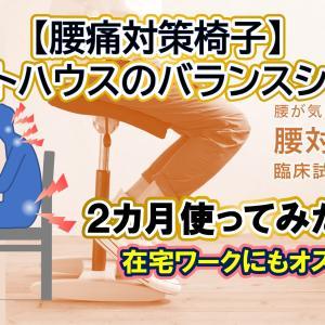 【腰痛対策椅子サカモトハウスのバランスチェア】在宅ワークにおすすめ