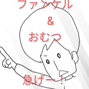 愛用ファンケル破格!