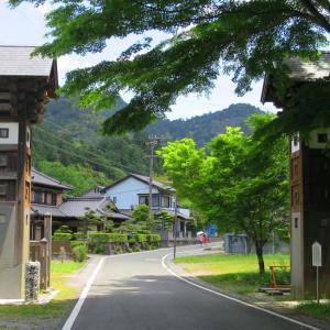 ■鳳来寺山