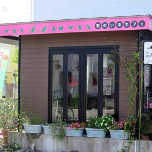 ■猫カフェ【ねこぐるま】
