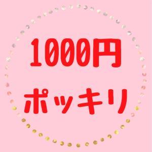 【1000円ポッキリ】おすすめ集めました♪