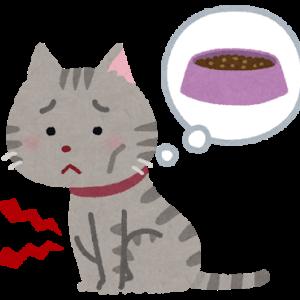 【猫】食欲減退の1週間−高カロリー食を食いつなぐ