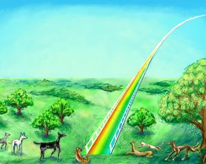【猫】「虹の橋」伝説−猫たちは渡らずに待っている
