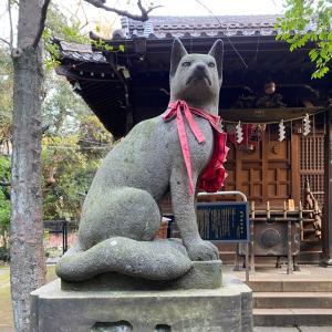 【赤坂ねえさんぽ②四合稲荷さんの狛犬さんとのんびりや^^】