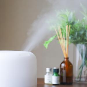 今、話題の加湿器肺!その3つの予防策を徹底解説。