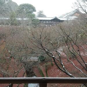 粉雪舞う東福寺 20201231