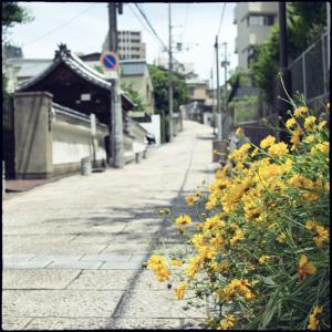 大阪〜上がったり下がったり_その拾弐 (終章)