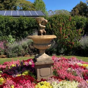 オーストラリアのお花が咲き乱れる春のお庭