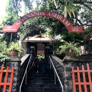 【ヨガ】【シヴァナンダアシュラム】初心者だけど、インドで1か月ヨガ修行してきました【インド】