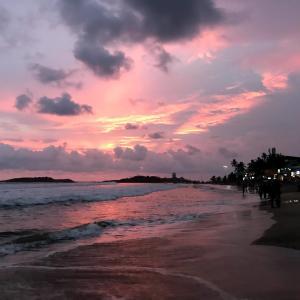 【アーユルヴェーダ】【デトックス】南インドでアーユルヴェーダ体験【インド】