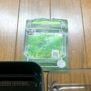 【まとめ】チアシードスプラウトを水耕栽培キットで育ててみた