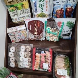 コストコ購入品~2021/8/19 日用品編~