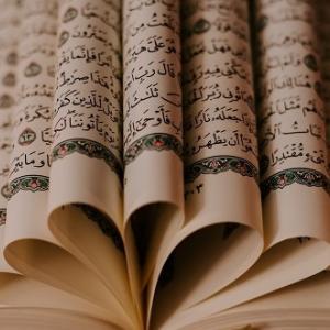 なぜアラビア語は世界一難しい言語と言われているのか?