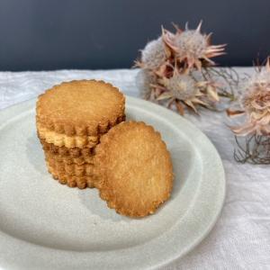 【レシピあり】ケトジェニックダイエットの間食その2「ラカントとは」・ケト実験15日目