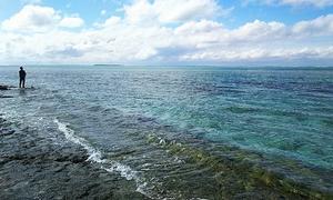 沖縄セミリタイア生活は新たな展開を迎えた
