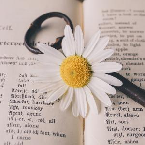 今年の英語学習は映画やドラマで学ぶ。