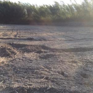 今年から新たに広げた農地の開拓作業をスタートさせることに・・・