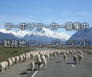 ニュージーランドワーホリ求人情報