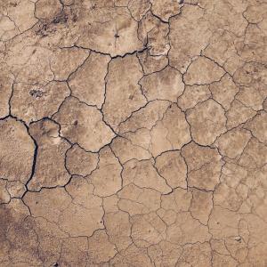 地球はあと60年しか作物を供給できない
