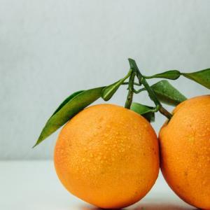 果物でタッチケア セロトニン ひどい睡眠問題が解決したアドバイス その5