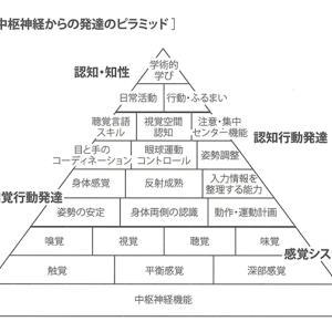 発達ピラミッド