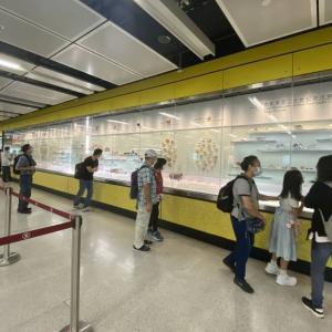 【香港最新情報】「宋皇台駅、400点の文物展示」