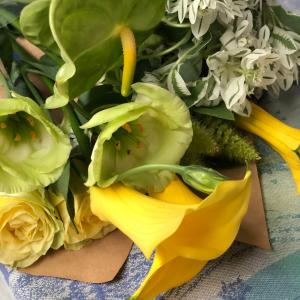 ビタミンカラーのお花