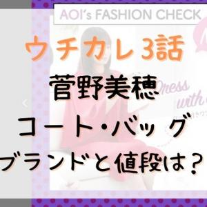 ウチカレ3話の菅野美穂のコートやバッグのブランドはどこ?値段はいくら?