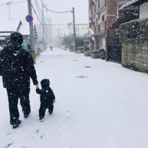 福岡は雪積もってます!とっちゃん初めての雪遊び。