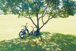 6歳の息子 自転車デビューするも股間を痛め挫折
